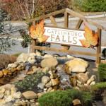 Cabins For Sale in Gatlinburg Falls